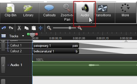 Activando la cejilla del editor de Audio
